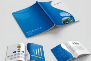 Thiết kế profile công ty bđs -3