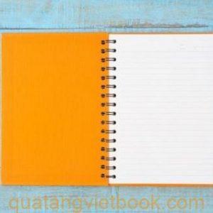 Sổ tay màu cam cho cung sư tử -2